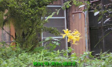 top_201110