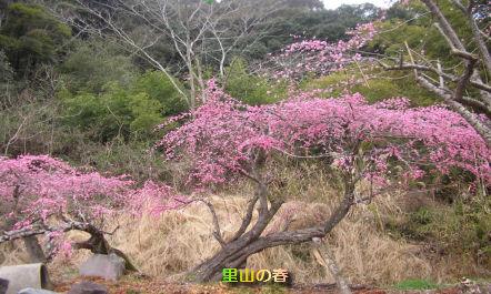 top_201203